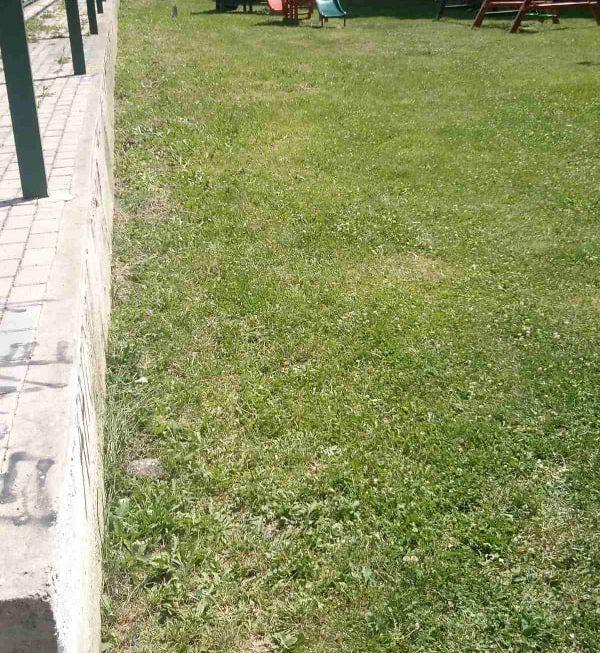 """Паркот кај комплекс ,,Стара гимназија"""" е исчистен, благодарност до нашиот сограѓанин Димитар Гошевски за реакцијата"""